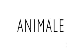 Jovem Aprendiz Animale 2016 vagas loja de roupas Maceió
