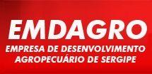 Jovem Aprendiz Emdagro 2017 vagas Aracaju concurso público aprendiz